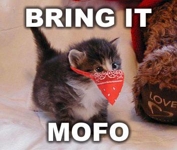 Bring it mofo