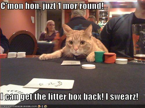 C'mon hon, juzt 1 mor round! I can get the litter box back! I swearz!