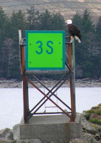 Eagle on green marker 3S