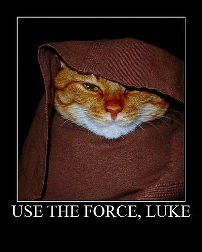 Use the Force, Luke