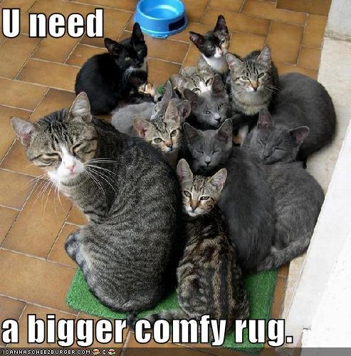 U need a bigger comfy rug.