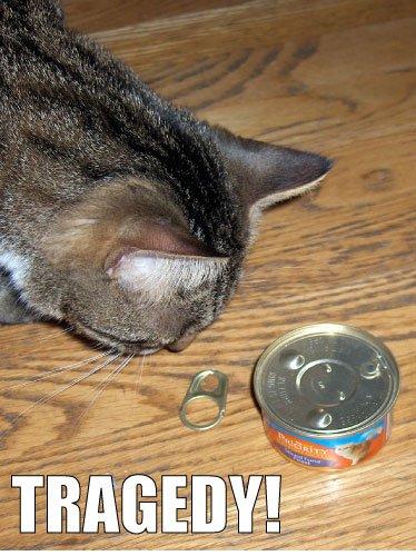 Tragedy!