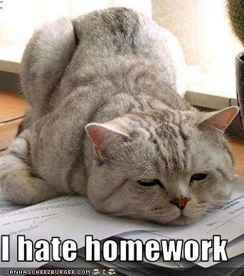 I hate homework