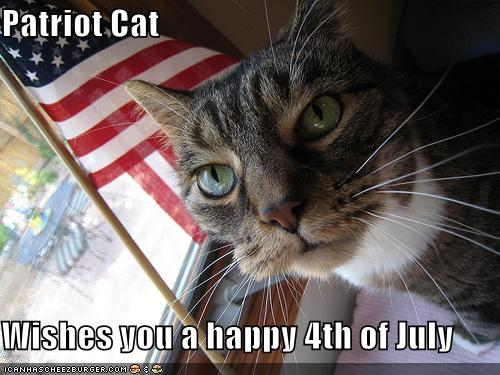 Patriot Cat wishes you a happy 4th of July