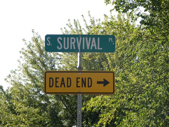 South Survival Place is a dead end