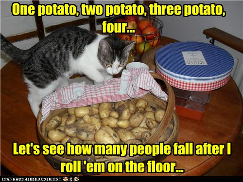 One potato, two potato, three potato, four... Let's see how many people fall after I roll 'em on the floor...