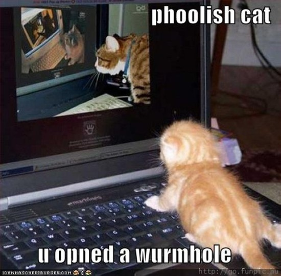 phoolish cat u opned a wurmhole