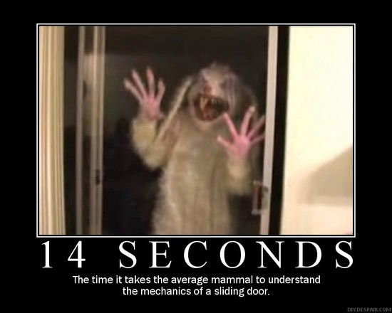 14 Seconds / The time it takes the average mammal to understand the mechanics of a sliding door.