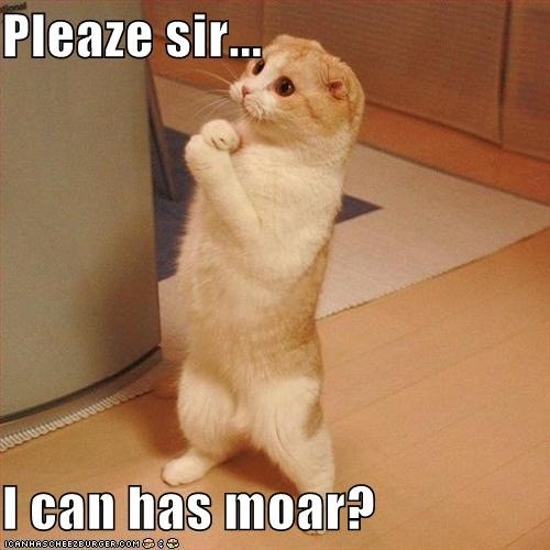 please sir... I can has moar?