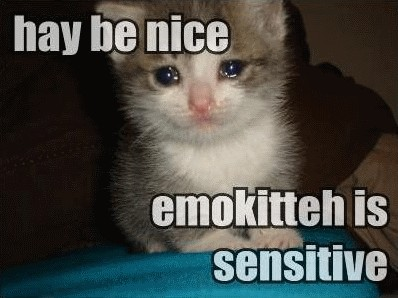hay be nice emokitteh is sensitive