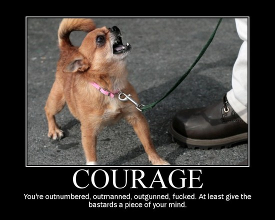Courage / You're outnumbered, outmanned, outgunned, fucked. At least give the bastards a piece of your mind.