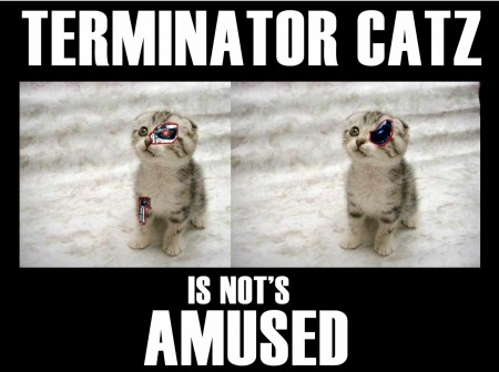 Terminator Catz is not's amused