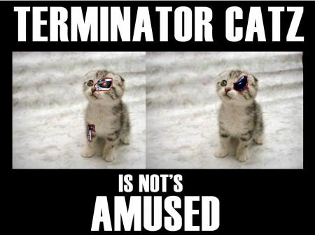 Terminator Catz is not's amused